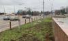 Сумчане просят снести ненужный забор в центре города
