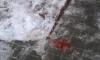 В Конотопе упавшей сосулькой разбило голову прохожему (обновлено)