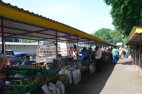 Птичий рынок харьков дать объявление куплю мед профессионалов доска объявлений