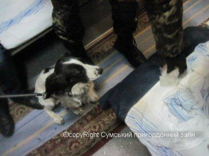 Наркотики в московском поезде
